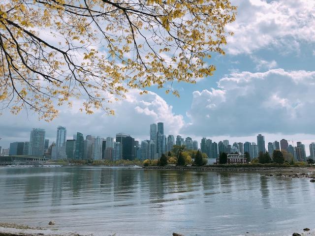 キャピラノ吊り橋とグラウスマウンテンヘ。バンクーバー市内1日観光ツアーに参加【カナダ】